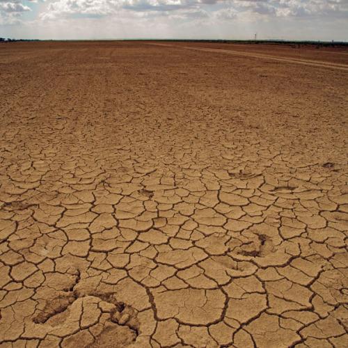 Desert, Tunesia