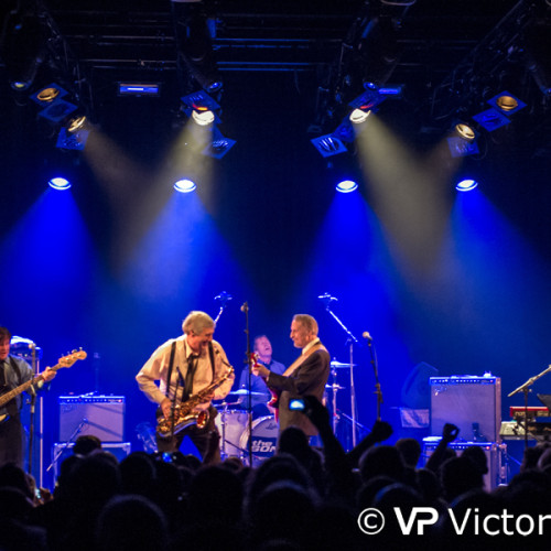The Sonics performing at Doornroosje in Nijmegen (2015/10/30)